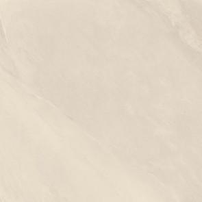 65 Parallelo White
