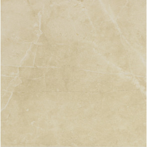 Evolutionmarble Golden Cream