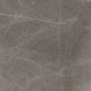 Evolutionmarble Grey