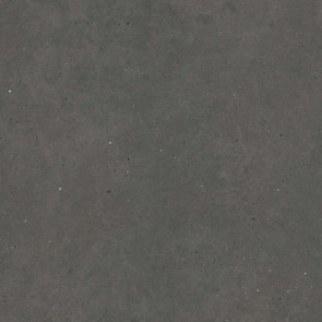 Moon Anthracite