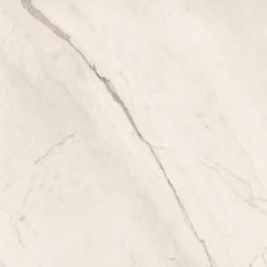 Trex3 Bianco