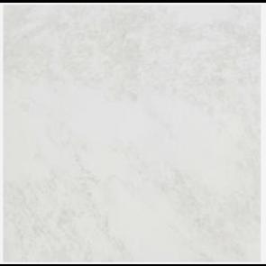 Evolutionmarble White Rhino